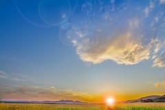 Cielo hermoso con el cielo, las nubes y el campo de maíz claros fotos de archivo