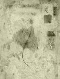 Cielo, hoja, árbol, ilustración del vector