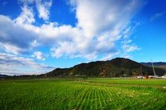 Cielo luminoso nel Giappone Immagine Stock