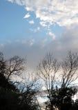Cielo misto nell'inverno Fotografie Stock Libere da Diritti