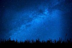 Cielo nocturno azul con las estrellas sobre el campo de la hierba Fotos de archivo libres de regalías