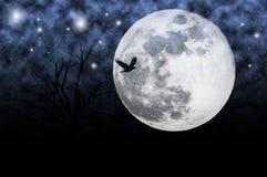 Cielo nocturno con la luna Imagenes de archivo