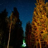Cielo nocturno con las estrellas en la noche del invierno con los árboles Fotografía de archivo