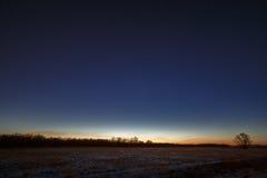 Cielo nocturno con las estrellas Un árbol contra la perspectiva del morni Imagen de archivo libre de regalías