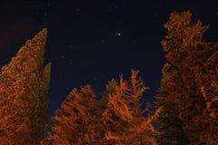 Cielo nocturno estrellado Foto de archivo libre de regalías
