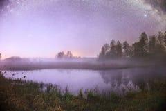 Cielo nocturno estrellado en un bosque Fotos de archivo libres de regalías