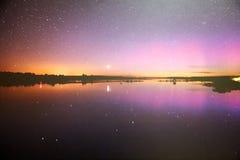 Cielo nocturno estrellado en un bosque Fotos de archivo