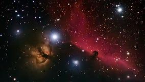 Cielo nocturno hermoso del espacio profundo Nebulosa de Horsehead en la constelación Orión stock de ilustración