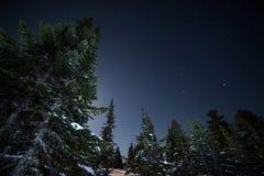 Cielo nocturno hermoso en Siberia Foto de archivo