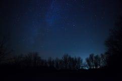 cielo nocturno hermoso, la vía láctea y los árboles fotos de archivo