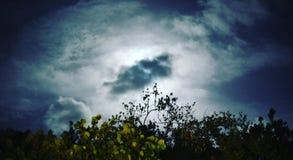 Cielo nocturno mágico Imagen de archivo