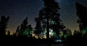 Cielo nocturno sobre copas metrajes