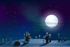 Cielo notturno con un dunoy pieno e stelle sul vettore del tetto Immagine Stock
