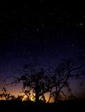 Cielo notturno del deserto Immagine Stock Libera da Diritti