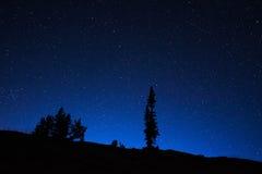 Cielo notturno del Wyoming Fotografie Stock Libere da Diritti