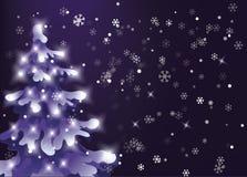 Cielo notturno di inverno La neve sta cadendo Showfall albero nevoso del pino con le luci di festa Immagine Stock