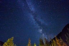 Cielo notturno nelle montagne Via Lattea Milioni di stelle sopraelevate Viaggio attraverso le montagne di Altai Immagine Stock