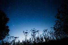 Cielo notturno scuro blu con molte stelle immagine stock libera da diritti