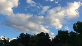 Cielo nublado almacen de video