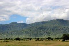 Cielo nublado de la colina verde Foto de archivo libre de regalías