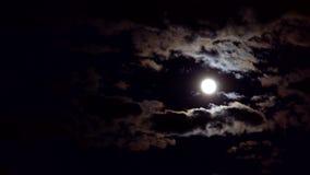 Cielo nublado de la noche con la luna almacen de metraje de vídeo