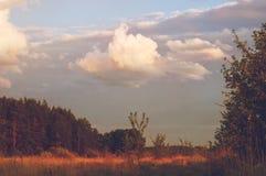 Cielo nublado del verano de la tarde sobre el valle del bosque de los lugares reservados de Rusia Paisaje en la puesta del sol, e Fotos de archivo libres de regalías