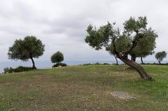 Cielo nublado sobre las colinas y mar en Sithonia, Chalkidiki, Grecia Fotos de archivo