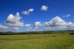 Cielo nublado y medow Fotos de archivo libres de regalías