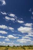Cielo nuvoloso blu Immagini Stock