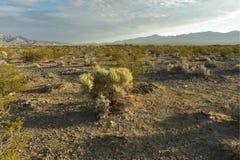 Cielo nuvoloso blu sopra la città del paesaggio del deserto del Mojave di Pahrump, Nevada, U.S.A. fotografia stock
