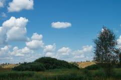 Cielo nuvoloso di estate sopra la valle collinosa del prato dei posti riservati della Russia Alberi ed erba del paesaggio immagini stock
