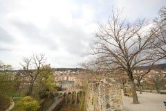Cielo nuvoloso ed albero di morte sul muro di cinta davanti agli ambiti di provenienza di pietra dell'erba del villaggio del pont Fotografie Stock