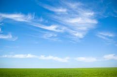 Cielo nuvoloso ed erba Fotografie Stock