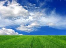 Cielo nuvoloso ed erba Fotografia Stock Libera da Diritti