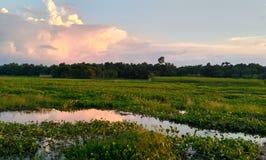 Cielo nuvoloso scuro al tramonto fotografia stock libera da diritti