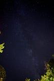 Cielo oscuro en gran parque nacional de la montaña ahumada Fotos de archivo libres de regalías