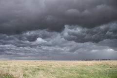 Cielo oscuro, turbulento sobre hierba de pradera fotografía de archivo