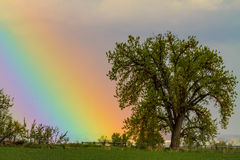 Cielo ottico variopinto dell'arcobaleno Immagini Stock Libere da Diritti