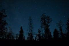 Cielo in pieno delle stelle Immagini Stock