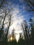 Cielo pieno di speranza Fotografia Stock
