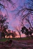 Cielo pintado Fotografía de archivo