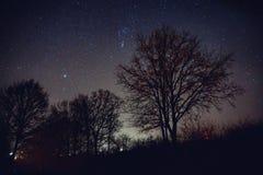 Cielo por completo de estrellas Imagenes de archivo