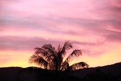 Cielo por la tarde Fotos de archivo libres de regalías