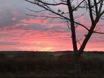Cielo rojo Fotografía de archivo
