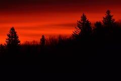 Cielo rojo por la mañana Fotografía de archivo