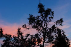 cielo rosso a piacere del marinaio di notte? Immagine Stock