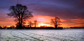 Cielo rosso sopra un campo in Scole Diss Norfolk Fotografie Stock