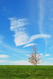 cielo scenico blu Immagine Stock Libera da Diritti
