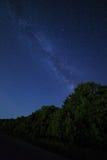 Cielo stellato di notte e la foresta per fondo Fotografia Stock