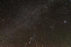 cielo stellato di notte Molte stelle immagine stock